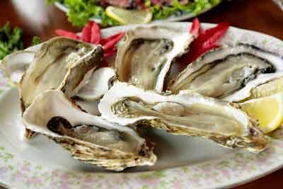oesters oestrogeen verlagen bij mannen