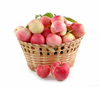 appelen quercetine
