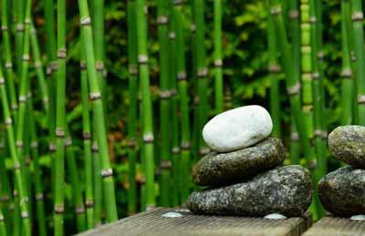 bamboe werking