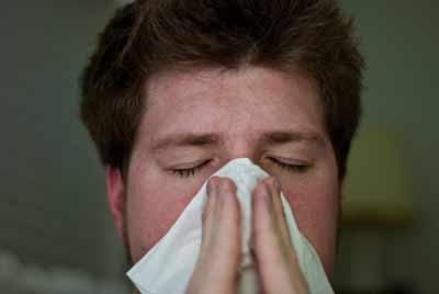 griep vlierbessen