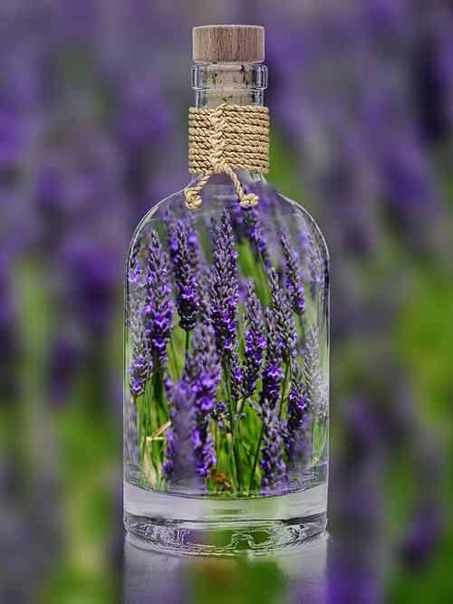 lavendel in fles