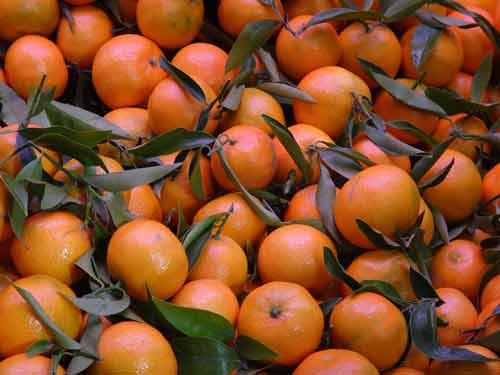 mandarijnolie werking