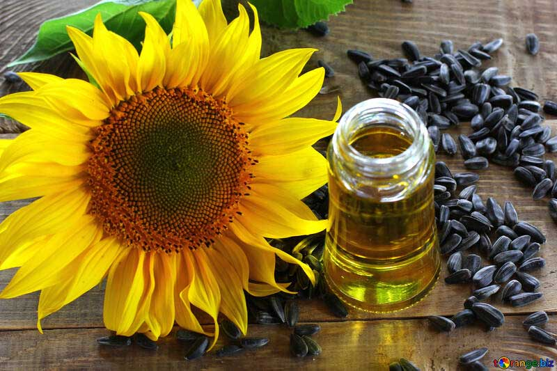 zonnebloemolie vitamine e